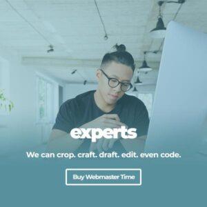virtual-webmaster-developer-wpSites